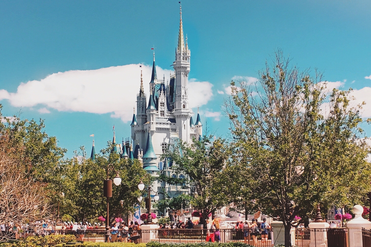 Vip Tour Disney